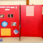 Elliot Primary School Science Fair Bermuda, Feb 26 2014-101