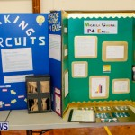 Elliot Primary School Science Fair Bermuda, Feb 26 2014-102