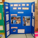Elliot Primary School Science Fair Bermuda, Feb 26 2014-103