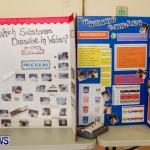 Elliot Primary School Science Fair Bermuda, Feb 26 2014-104