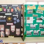 Elliot Primary School Science Fair Bermuda, Feb 26 2014-110