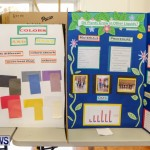 Elliot Primary School Science Fair Bermuda, Feb 26 2014-118