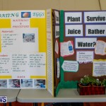 Elliot Primary School Science Fair Bermuda, Feb 26 2014-12