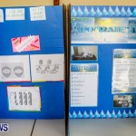 Elliot Primary School Science Fair Bermuda, Feb 26 2014-122