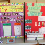 Elliot Primary School Science Fair Bermuda, Feb 26 2014-123