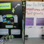 Elliot Primary School Science Fair Bermuda, Feb 26 2014-124