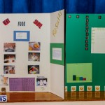 Elliot Primary School Science Fair Bermuda, Feb 26 2014-126