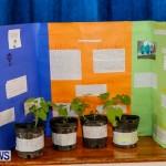 Elliot Primary School Science Fair Bermuda, Feb 26 2014-127