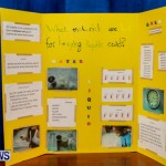 Elliot Primary School Science Fair Bermuda, Feb 26 2014-129