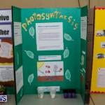 Elliot Primary School Science Fair Bermuda, Feb 26 2014-15