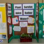 Elliot Primary School Science Fair Bermuda, Feb 26 2014-16