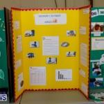 Elliot Primary School Science Fair Bermuda, Feb 26 2014-17