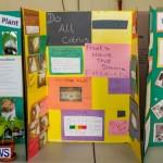 Elliot Primary School Science Fair Bermuda, Feb 26 2014-20