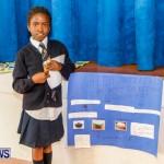 Elliot Primary School Science Fair Bermuda, Feb 26 2014-25
