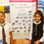 Elliot Primary School Science Fair Bermuda, Feb 26 2014-26
