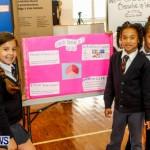 Elliot Primary School Science Fair Bermuda, Feb 26 2014-28