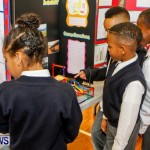 Elliot Primary School Science Fair Bermuda, Feb 26 2014-3