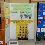Elliot Primary School Science Fair Bermuda, Feb 26 2014-33