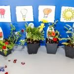 Elliot Primary School Science Fair Bermuda, Feb 26 2014-36