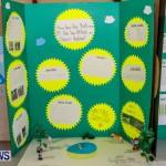 Elliot Primary School Science Fair Bermuda, Feb 26 2014-39