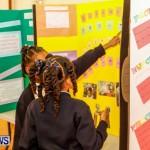 Elliot Primary School Science Fair Bermuda, Feb 26 2014-4