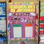 Elliot Primary School Science Fair Bermuda, Feb 26 2014-45