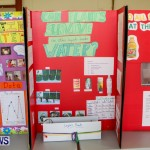 Elliot Primary School Science Fair Bermuda, Feb 26 2014-46