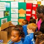 Elliot Primary School Science Fair Bermuda, Feb 26 2014-5