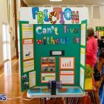 Elliot Primary School Science Fair Bermuda, Feb 26 2014-52
