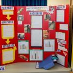 Elliot Primary School Science Fair Bermuda, Feb 26 2014-56