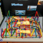 Elliot Primary School Science Fair Bermuda, Feb 26 2014-58