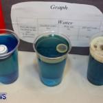 Elliot Primary School Science Fair Bermuda, Feb 26 2014-60