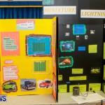 Elliot Primary School Science Fair Bermuda, Feb 26 2014-63