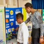 Elliot Primary School Science Fair Bermuda, Feb 26 2014-7