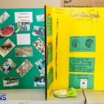 Elliot Primary School Science Fair Bermuda, Feb 26 2014-72