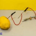Elliot Primary School Science Fair Bermuda, Feb 26 2014-74