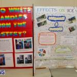 Elliot Primary School Science Fair Bermuda, Feb 26 2014-77
