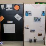 Elliot Primary School Science Fair Bermuda, Feb 26 2014-78