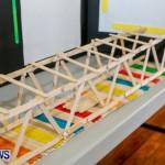 Elliot Primary School Science Fair Bermuda, Feb 26 2014-81