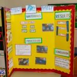 Elliot Primary School Science Fair Bermuda, Feb 26 2014-82
