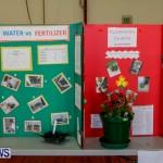 Elliot Primary School Science Fair Bermuda, Feb 26 2014-83
