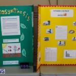 Elliot Primary School Science Fair Bermuda, Feb 26 2014-84