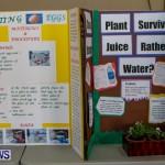 Elliot Primary School Science Fair Bermuda, Feb 26 2014-85