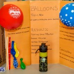 Elliot Primary School Science Fair Bermuda, Feb 26 2014-86