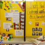 Elliot Primary School Science Fair Bermuda, Feb 26 2014-87