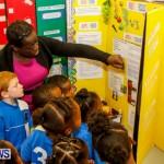 Elliot Primary School Science Fair Bermuda, Feb 26 2014-9