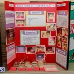 Elliot Primary School Science Fair Bermuda, Feb 26 2014-90