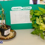 Elliot Primary School Science Fair Bermuda, Feb 26 2014-92