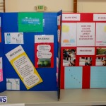 Elliot Primary School Science Fair Bermuda, Feb 26 2014-96