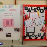 Elliot Primary School Science Fair Bermuda, Feb 26 2014-97